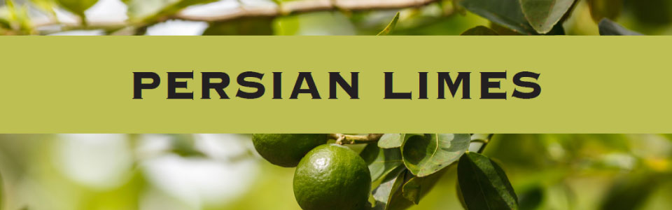 02-persian-limes