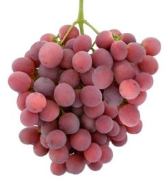 red-globe-grapes